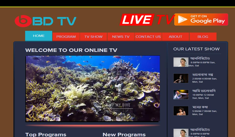 TV Website 02-11