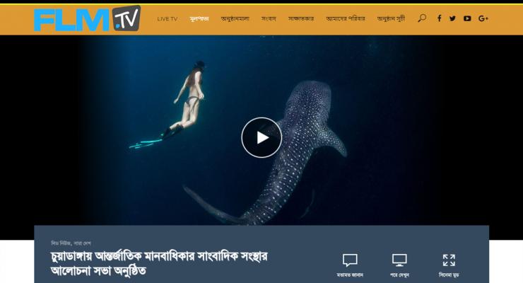 TV Website 03-34